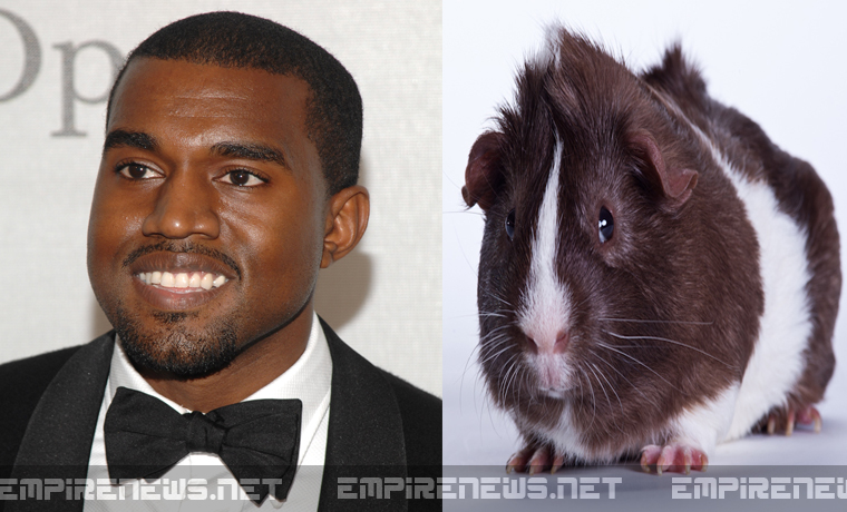 empire-news-kanye-west-dna-used-to-clone-and-breed-guinea-pigs