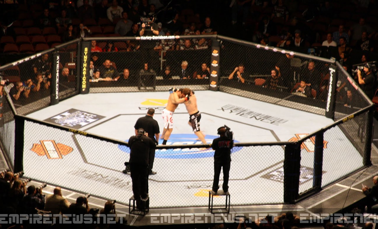 UFC Fighter Punches Himself In The Face, Gets Knocked Out During Bout