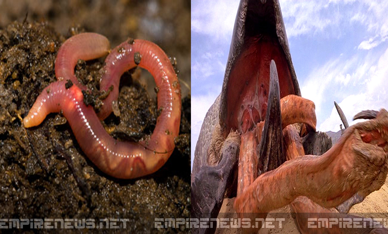 Government, Health Department Says Ebola Turns Earthworms Into Real Life 'Tremors'