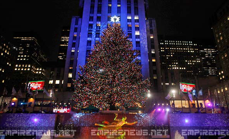 Christmas Tree In Nyc.World Famous Rockefeller Christmas Tree In Nyc Turns Out To