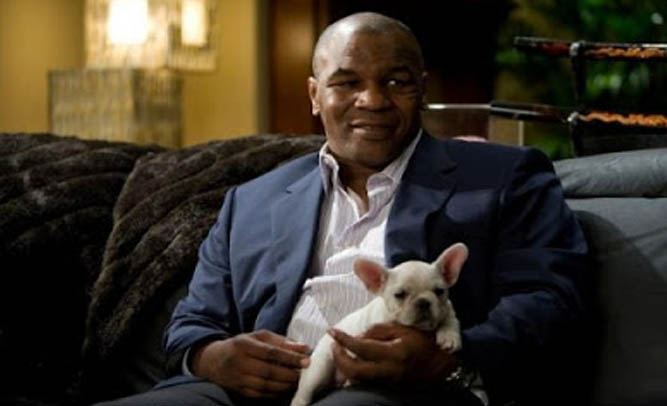 Mike Tyson Says Budweiser's 'Lost Puppy' Commercial Made Him Cry, Adopted Dog Next Day