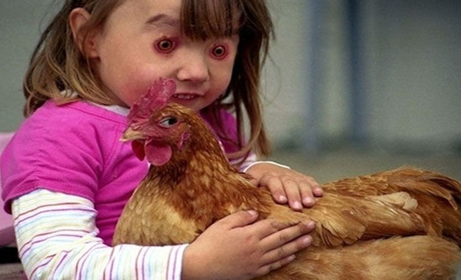 Chicken Pet Quote: Obama Has An IQ Of 102 The Lowest IQ Of All The US
