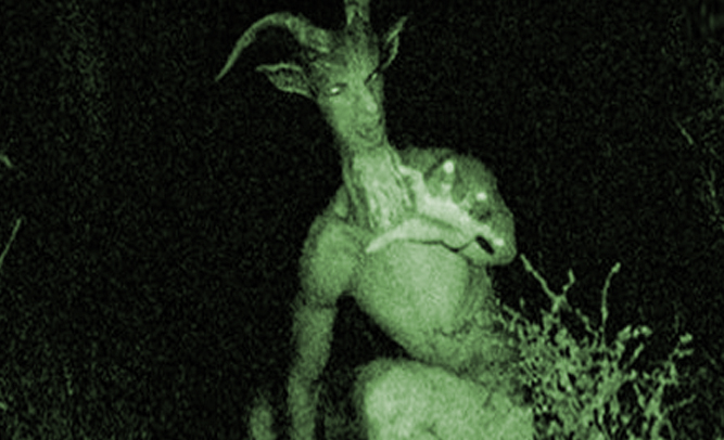Half-Man, Half-Goat Creature Caught On Camera By Hunter In ... - photo#20