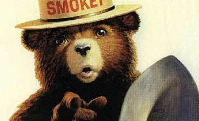 smokey the bear dies in horrific forest fire empire news